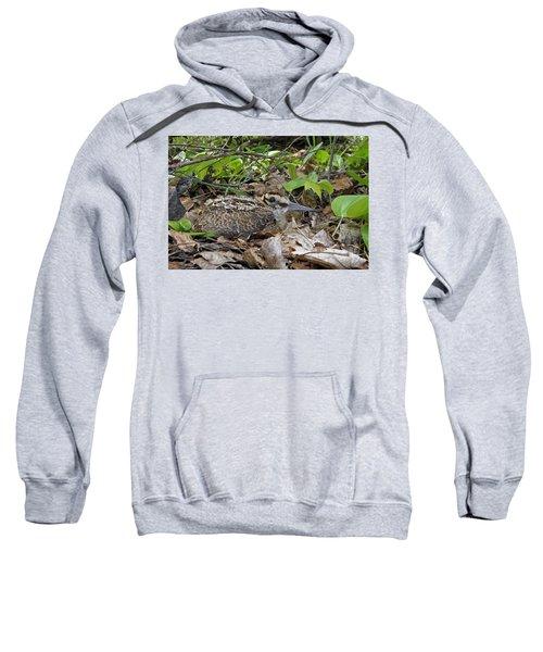 American Woodcock Chick Sweatshirt