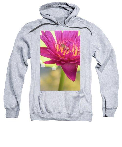 Attraction. Sweatshirt