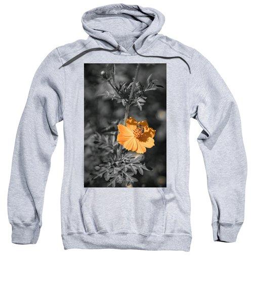 Bee On Flower Sweatshirt