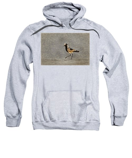 Black-winged Lapwing Art Sweatshirt by Kay Brewer