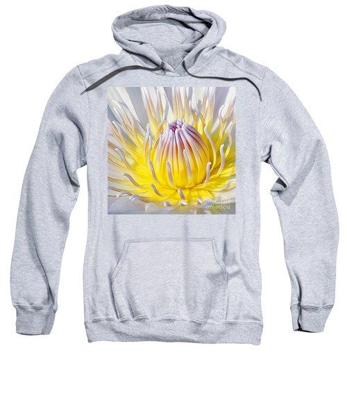 Blue Water Lily Sweatshirt