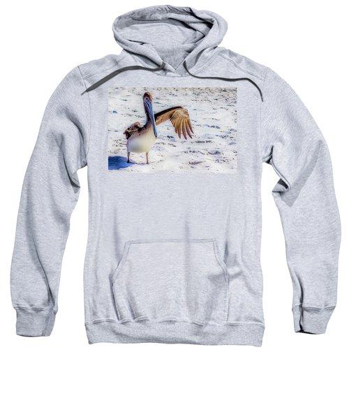 Brown Pelican Wave Sweatshirt