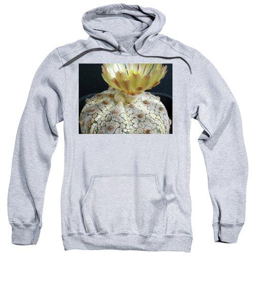 Cactus Flower 1 Sweatshirt