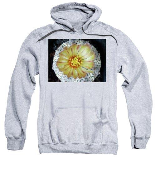 Cactus Flower 2 Sweatshirt