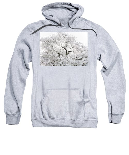 Sweatshirt featuring the photograph Cherry Blossoms by Peter Simmons