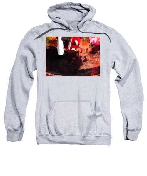 Christmas Kitty Sweatshirt