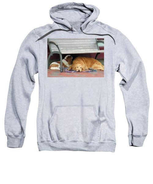 Dog Daze Sweatshirt