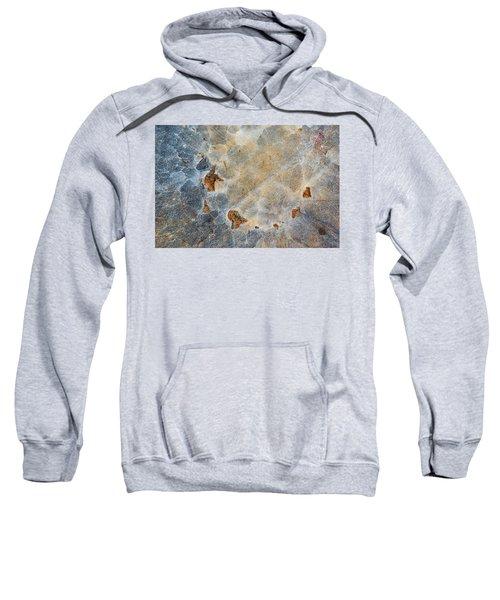 Earth Portrait 286 Sweatshirt