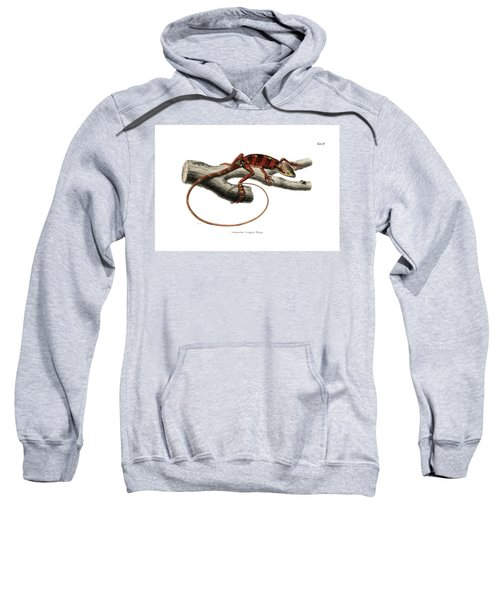 Sweatshirt featuring the drawing Eastern Casquehead Iguana, Laemanctus Longipes by Carl Wilhelm Pohlke