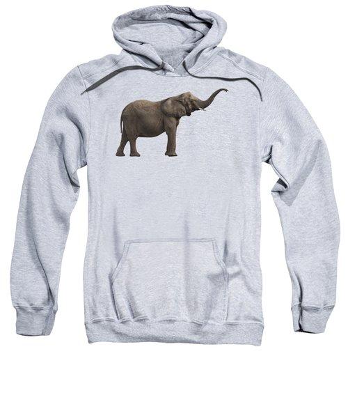 Elephant I Sweatshirt
