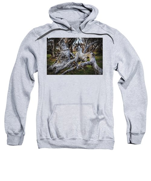 Fallen From Grace Sweatshirt