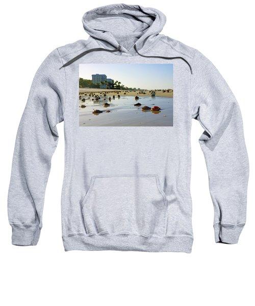 Fighting Conchs On The Beach In Naples, Fl Sweatshirt