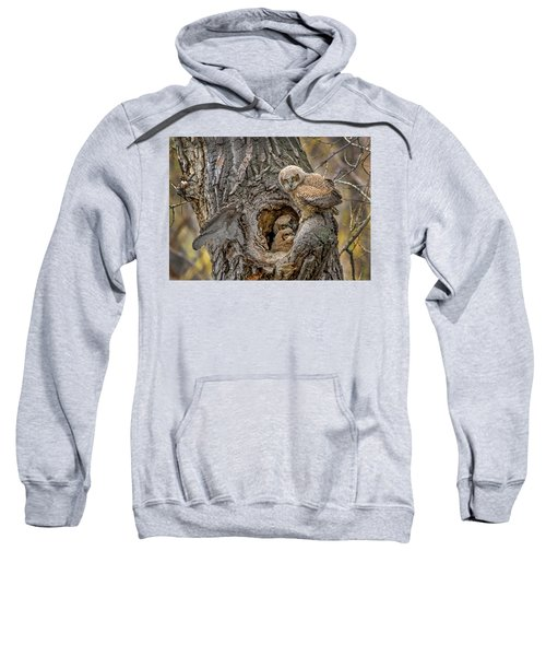Great Horned Owlets In A Nest Sweatshirt