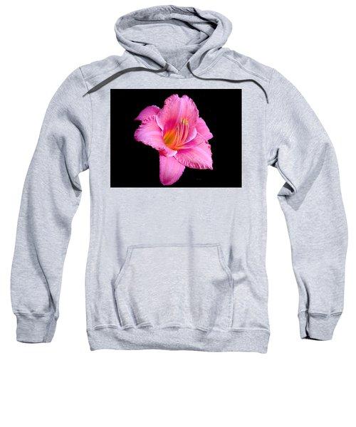 In The Pink Sweatshirt