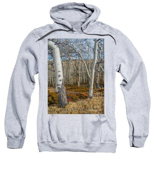 Into The Trees Sweatshirt