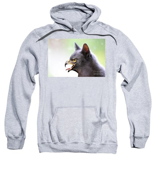 Kitty Hawk Sweatshirt