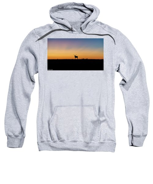 Last Light Sweatshirt