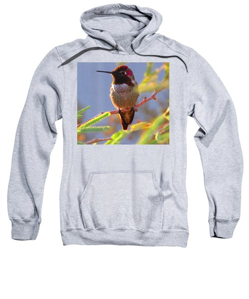 Little Jewel With Wings Sixth Version Sweatshirt
