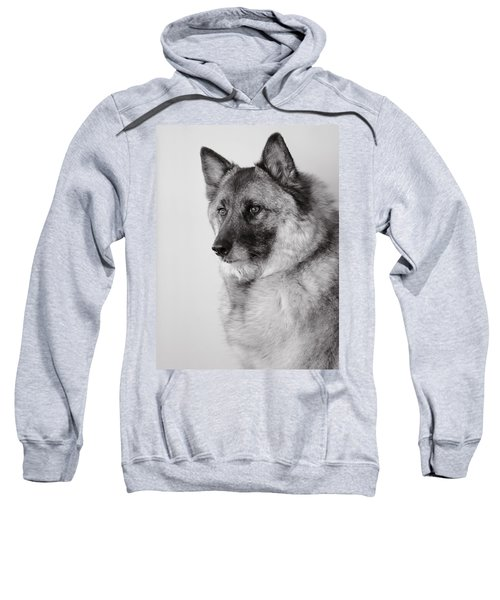 Dog Loki Sweatshirt