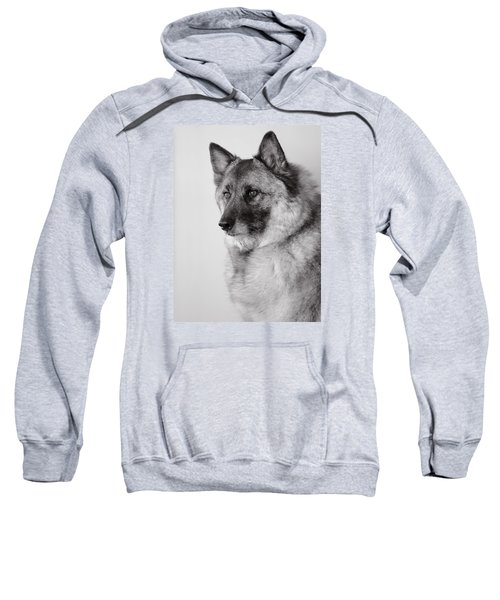 Dog Loki Sweatshirt