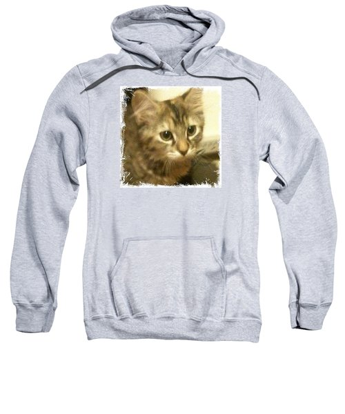 Ellie Kitty Sweatshirt