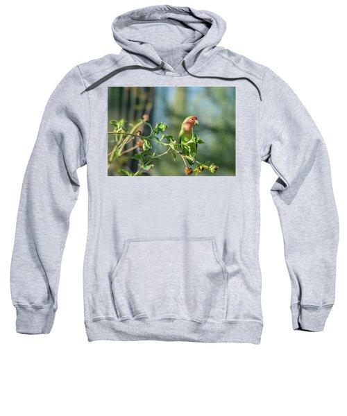 Lovely Little Lovebird  Sweatshirt