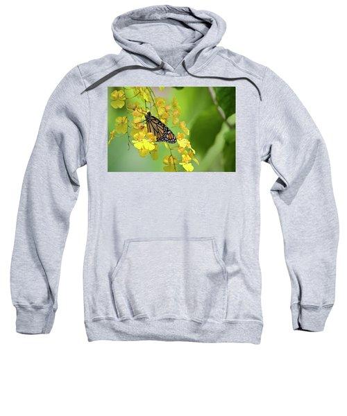 Monarch Butterfly On Yellow Orchids Sweatshirt