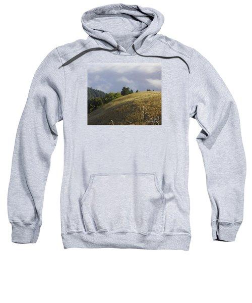 Mt. Tamalpais Study #1 Sweatshirt
