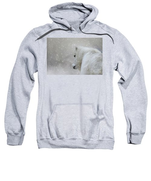 On A Cold Winter Day Sweatshirt