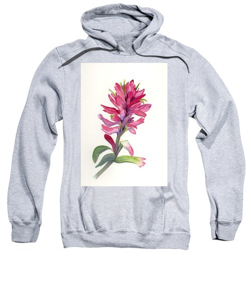 Paintbrush Sweatshirt