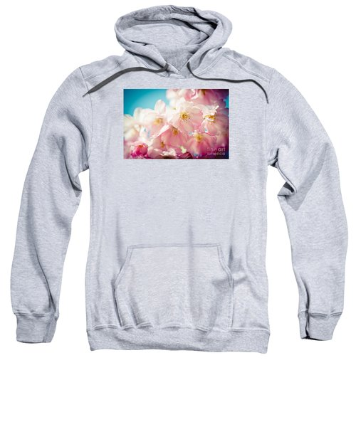 Pink Cherry Blossoms Closeup Sweatshirt