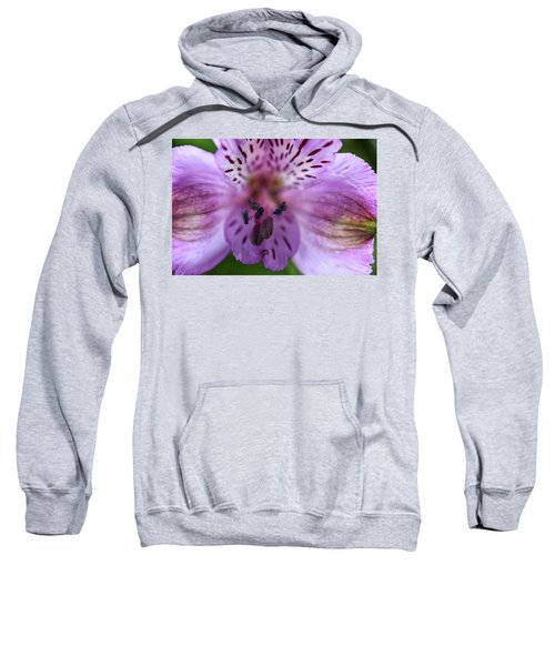Purple Flower Sweatshirt
