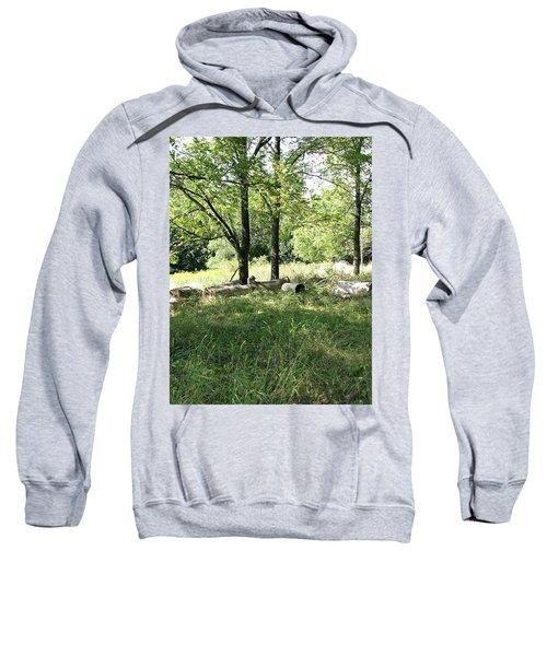 Resting Spot Sweatshirt