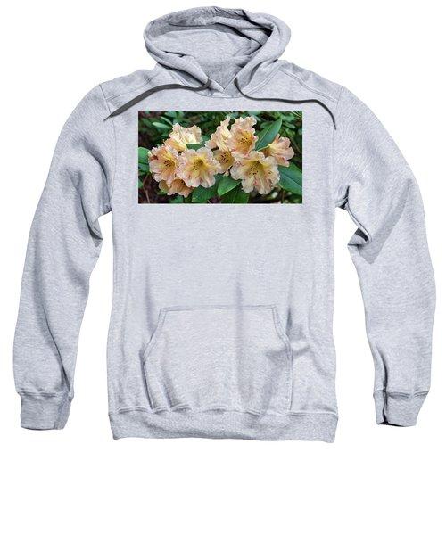 Rhododendron Sweatshirt