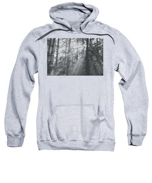 Splendor Sweatshirt
