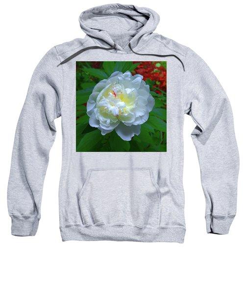 Spring Peony Sweatshirt