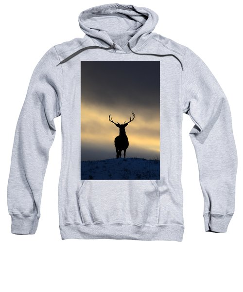 Stag Silhouette  Sweatshirt