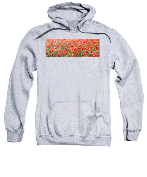 Summer Poetry Sweatshirt