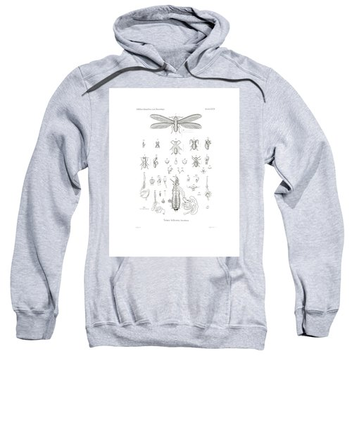 Sweatshirt featuring the drawing Termites, Macrotermes Bellicosus by H Hagen