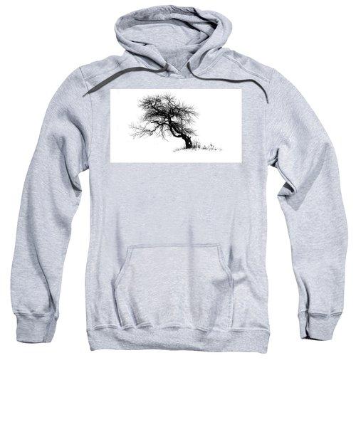 The Apple Tree Sweatshirt