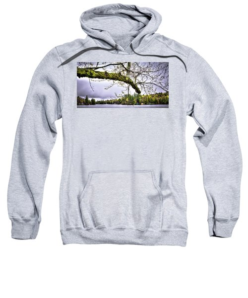 The Pond In Old Forge Sweatshirt by David Patterson