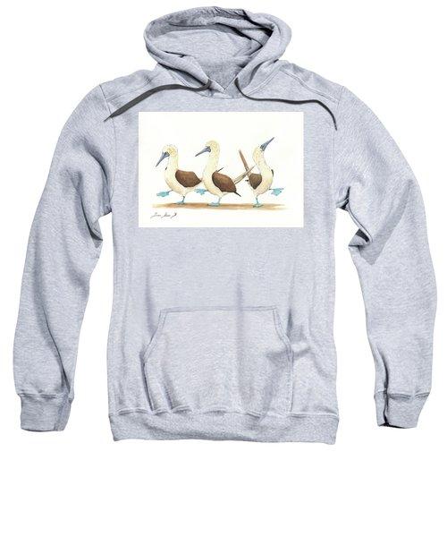 Three Blue Footed Boobies Sweatshirt by Juan Bosco