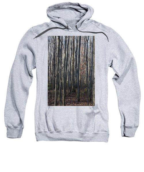 Treez Sweatshirt