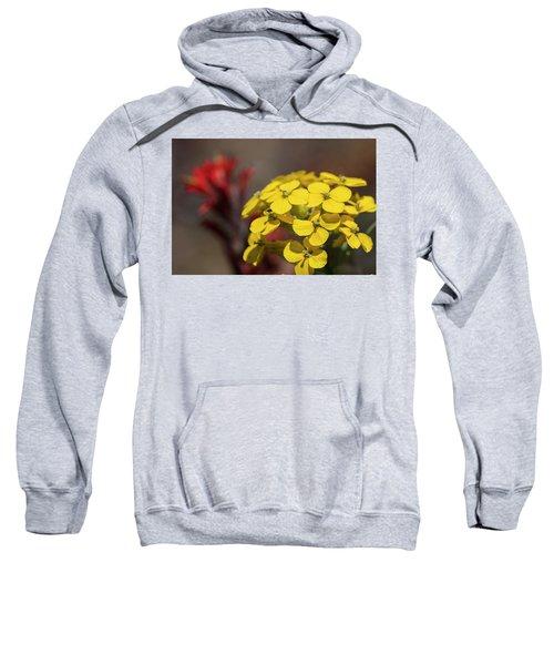 Wallflower Sweatshirt