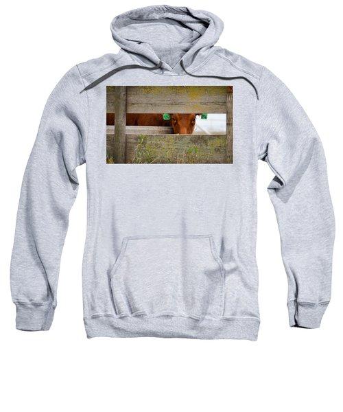 1206 Sweatshirt
