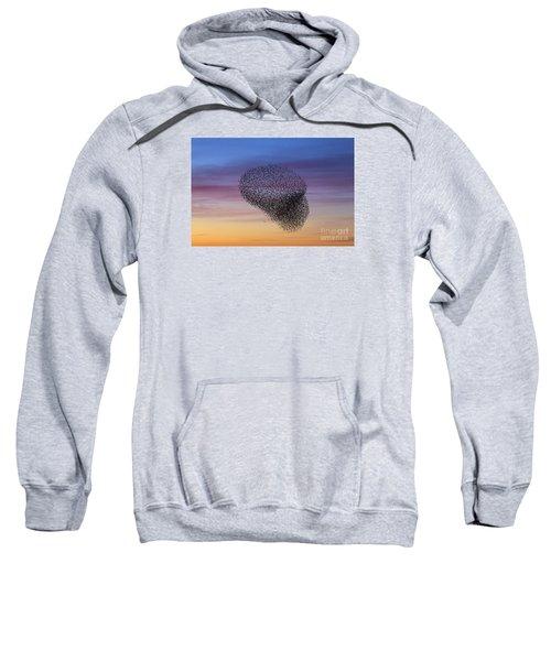 150501p260 Sweatshirt