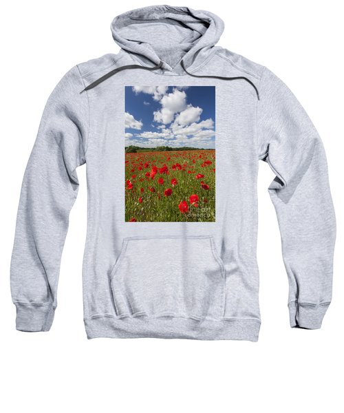 151124p076 Sweatshirt