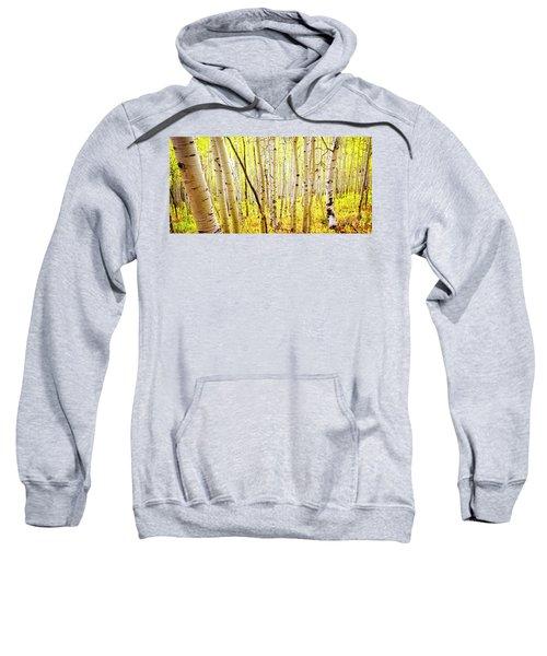 Sweatshirt featuring the photograph Aspen Grove II by Scott Kemper