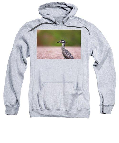 Green Heron Sweatshirt