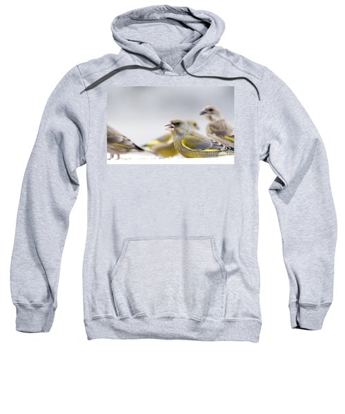 Greenfinches Sweatshirt